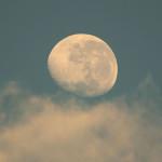 TOMC / Lunar Maria